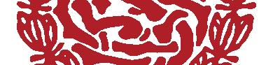 Virgielreünist logo