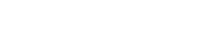 Local Councillors Network logo