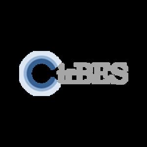 CirBES