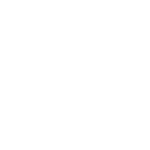 Der Balgrist