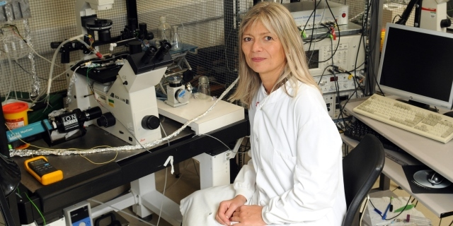 Barbara Casadei in the lab