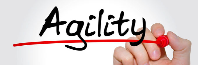 Will working with agility be the new norm now?