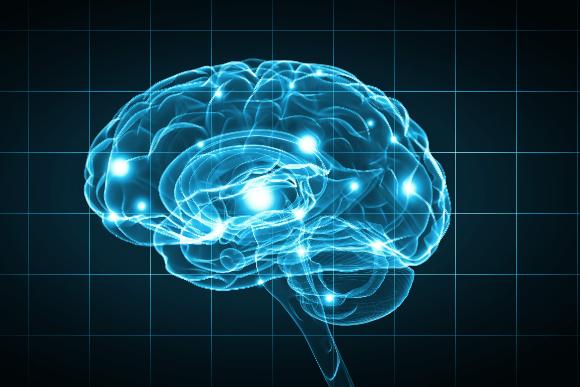 Brain institute