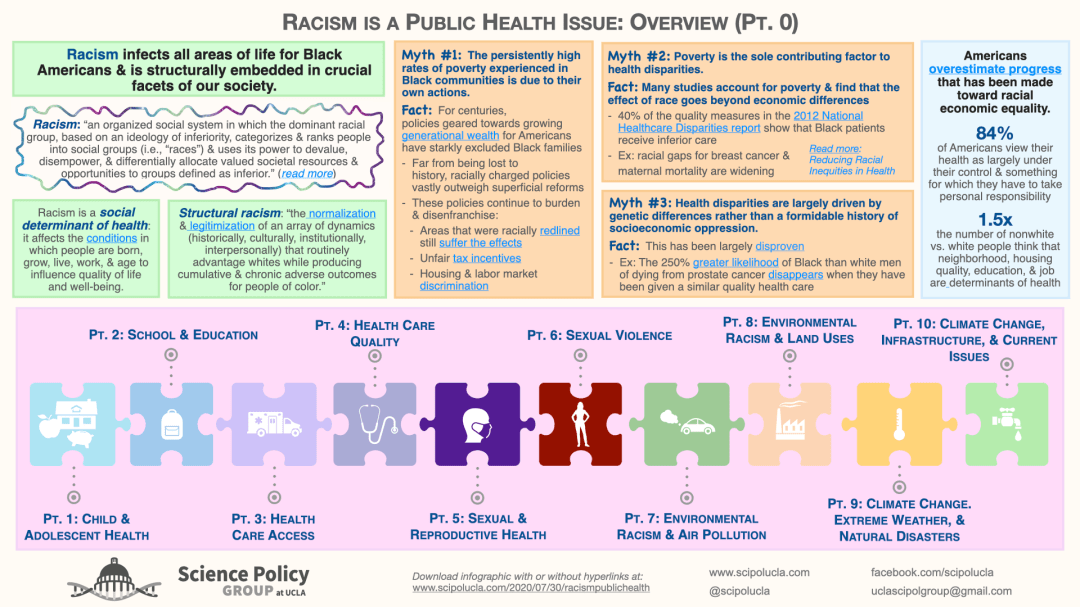 One of the group's infographics, giving an overview of racism as a public health issue.