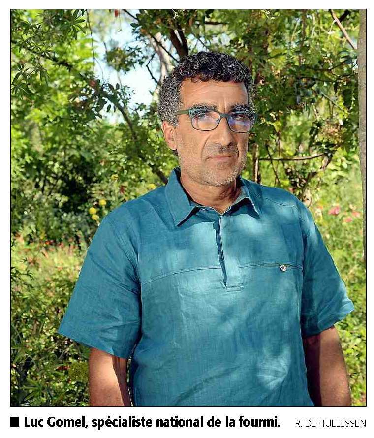Luc Gomel - La gestion d'une fourmilière