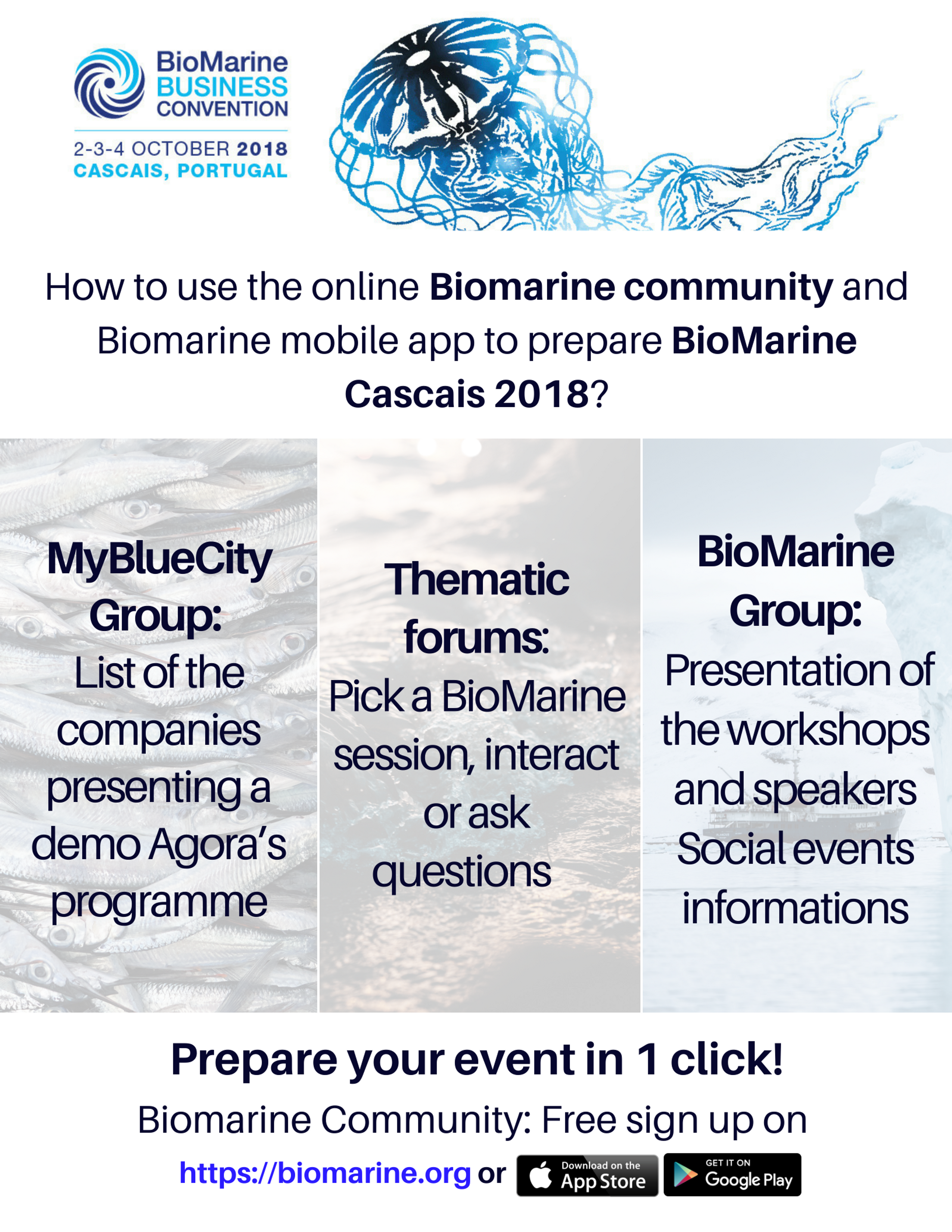 BioMarine | Join the different groups and forum to prepare BioMarine